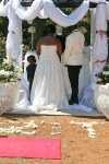 Blushing Makoti Zandile and Tshepo's Wedding