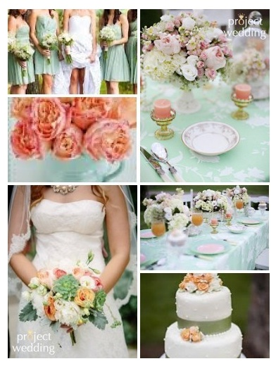 blushing-makoti-theme-colours-ideas-3